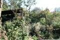 Do-Dorstfeld: Sanierungsbedürftig oder Abrissfähig? Historisches und großzügiges Zweifamilienhaus mit sehr schönem Grundstück