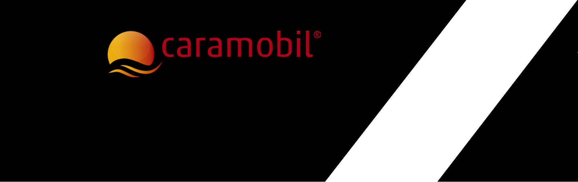 Logo Banner Mobil