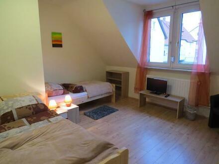 Monteurzimmer in Mannheim Sandhofen 20 EUR / Nacht / Person