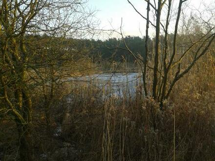 See zum Erholen & Angeln , mit 8057 qm Grundstück in 16306 Passow- Uckermark