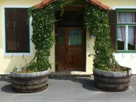 Burgenland/Jennersdorf: uriger Vierkanthof mit großzügigem Wohnbereich, Ställen und ca.3355 m² Grund