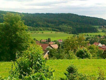 VILLA am Wald mit Blick b.Moritzberg beim Erlanger Golfplatz, Maximalausstattung