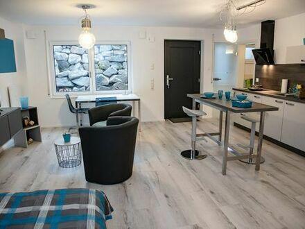 Eimeldingen sehr schöne und hochwertig möblierte 1-Zimmer ELW nahe Basel ab 04.04.19 verfügbar