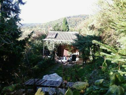 Wochenendgrundstück mit Häuschen und Obstbäumen in 73660 Urbach