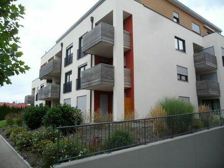 Wohnung z.vermieten 2 Zi 60 qm EG, Süd-West Terasse ab 01.01.2019