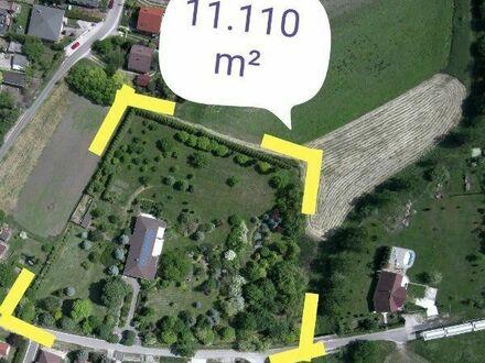 Netzunabhängig, Ökohaus, Selbstversorger, Anwesen, Ungarn, 40 Km w.lich v. Budapest, von Eigentümer