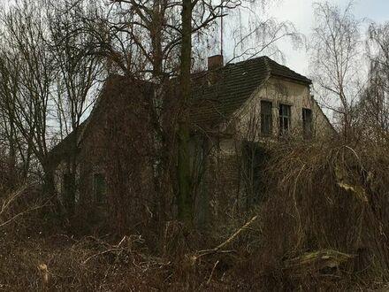 Einfamilienhaus Abrisshaus Haus Grundstück Baugrundstück in 15324 Letschin Brandenburg Oderbruch
