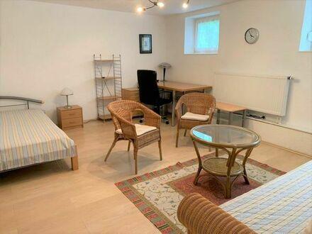 Schönes + modern möbliertes Zi-Apartment