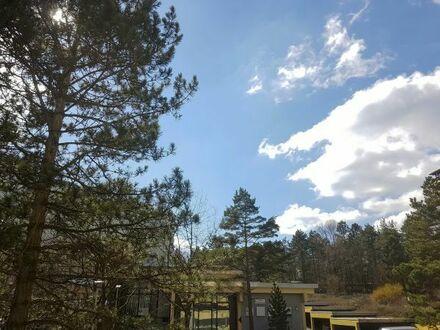 Wohnen im Waldpark 2 Zi. Wohnung mit 2 Balkone in Eisingen