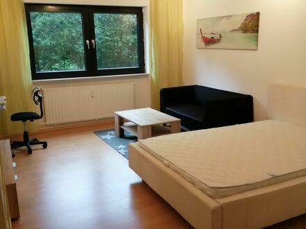 Vollmöblierte 1 Zimmer Wohnung mit Balkon in Lemberg