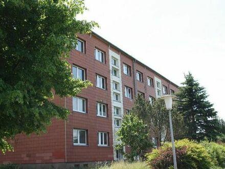 bis zu 2 Monate Mietfrei 4 Raum Wohnung mit Balkon Garage Garten 585EUR warm