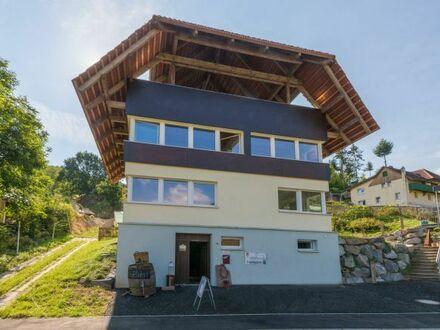 Luxusobjekt in Toplage! Nullenergie-Passivhaus in Bestausstattung mit großer Einliegerwohung!