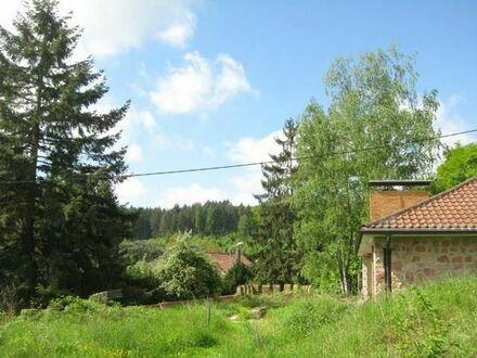 Sonniges Anwesen am oberen Waldrand mit Kreativ- Charakter und märchenhaften Möglichkeiten.TEIL 1