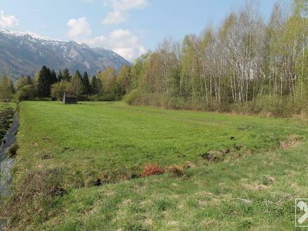 Grünland in Salzburg Leopoldskron-Moos