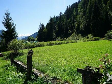 Romantisches Baugrundstück in Waldrandlage in Dorfgastein