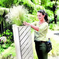 Bepflanzter Sichtschutz für den Garten