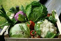 Gesund in den Herbst: Mit diesen Küchenhelfern gelingt's