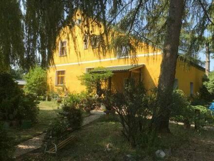 Werneuchen - Großes freistehendes Einfamilienhaus