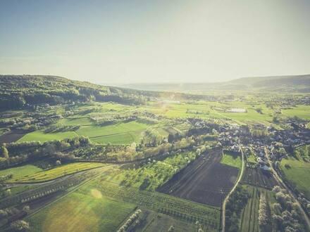 Bamberg - MFH/ WGH aus zu projektierendem Hotel | ideal für Wohnungen