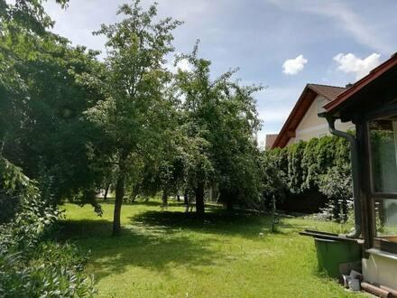 Plattling - zentrumsnah Zwei- und Einfamilienhaus mit schönem Grundstück