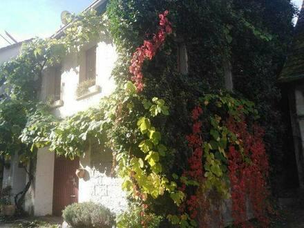 Neudenau, Siglingen - Gemütliches Fachwerkhaus im beschaulichen Siglingen (BW)
