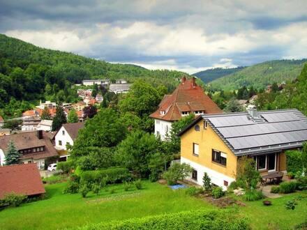 Bad Herrenalb - Über den Dächern von Bad Herrenalb