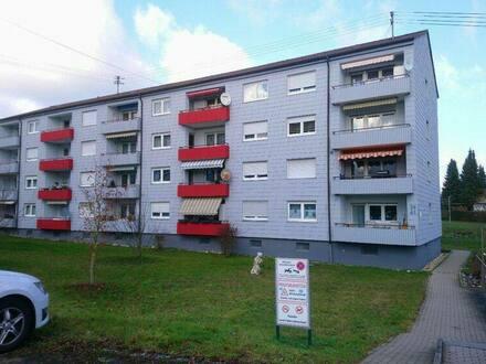 Bad Rappenau - Helle, freundliche 3-Zi-Whg mit Süd-Balkon u. EK in Bad Rappenau