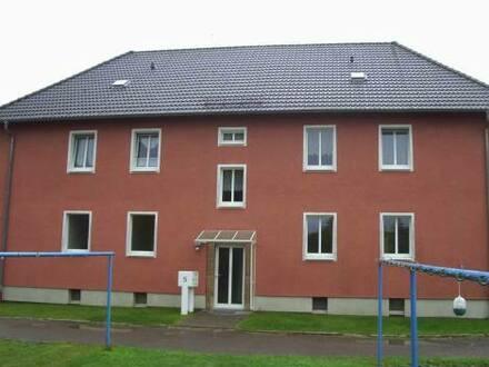 Meuselwitz - Wohnung mit sonnigem Garten sucht ab sofort neuen Besitzer