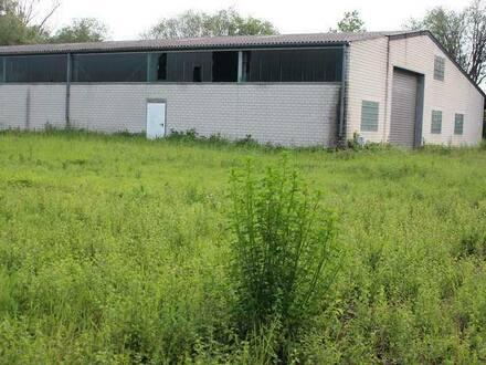 Erbes-Büdesheim - Lager- u. Produktionshalle mit Baugrundstück