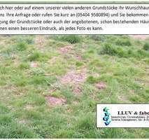 Gerstungen - Rank und schlank! Grundstück am Ortsrand