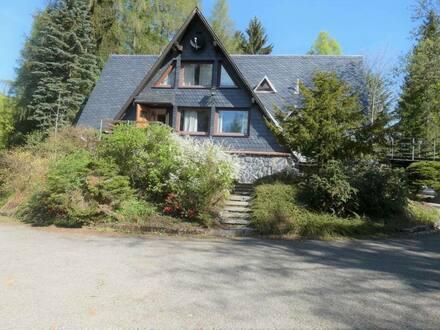 Schönbrunn bei Hildburghausen - Waldanwesen mit Gästehaus in Alleinlage mit Seeblick