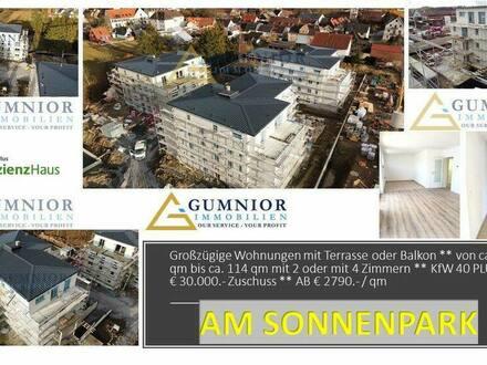 Kemnath - 360 GRAD Video erhältlich!! 2 Zimmer Penthouse mit schöner Terrasse ** KfW 40 PLUS ++ 30.000.-Euro