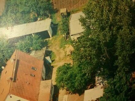 Prenzlau - Haus mit grundstück zu verkauf