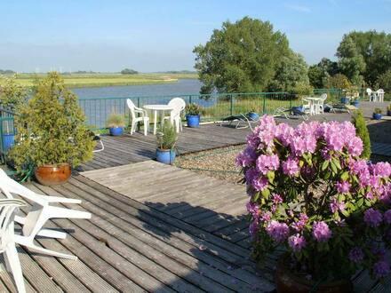 Cadenberge - Haus Ateliers direkt am Wasser mit Bootsanleger Wassergrundstück