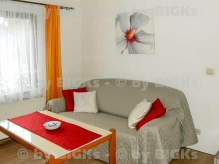 Halle - nur für Nichtraucher: Möblierte 2-Zimmer Whg, 06120 Halle-Kröllwitz (-;)