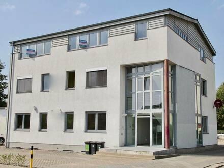 Neubrandenburg - HORN IMMOBILIEN ++ Büroetage und auf Anfrage auch das ganze Gebäude!
