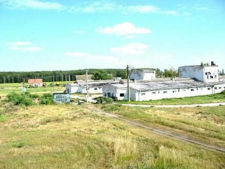 Malá Belá - Bauerrnhof im Eigentum zu verkaufen