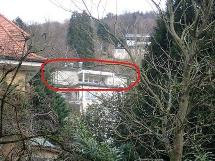 Heidelberg - Einmalige Terrassenwohnung in Heidelberg-Neuenheim