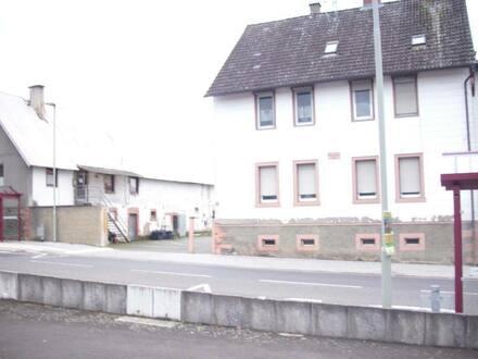 Florstadt - Bauernhofreite mit 2 Häusern und großer Lagerfläche bestens für Handwerker geeignet