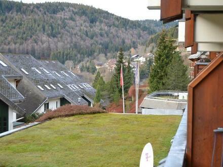 Todtmos - Sehr schöne 2 Zi.-Eigentums-/ Ferienwohnung mit Balkon, im Schwarzwald-Ferienparadies Todtmoos