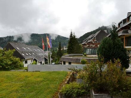 Todtmos - Schöne 1 Zimmer Eigentums- / Ferienwohnung, im Schwarzwald-Ferienparadies 79682 Todtmoos