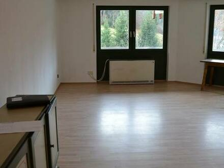 Todtmos - Sehr schöne 1 Zi.-Eigentums-/ Ferienwohnung mit Balkon, im Schwarzwald-Ferienparadies Todtmoos