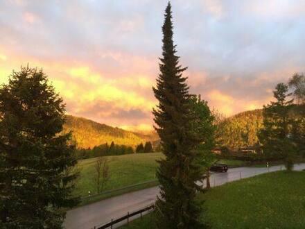Oberstaufen - Eigentumswohnung in Steibis bei Oberstaufen mit Hochgratblick