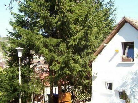 Titisee-Neustadt - IN IDYLLISCHER, RUHIGER WOHNLAGE EIN -S U P E R- KLEINES HÄUSCHEN