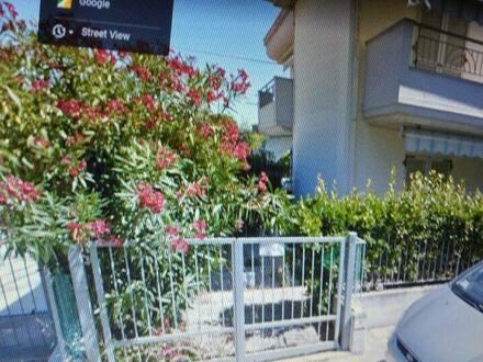 Delmenhorst - Apartment 66 m2 + gr.Garage Grottammare Marche Adria Italien