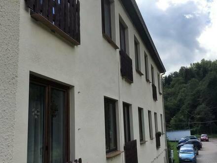 Breitenbrunn/ Antonsthal - Renovierte 4 Zimmer Wohnung mit Gäste WC!
