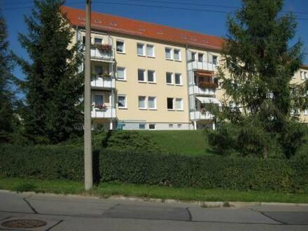Crimmitschau - Helle, gemütliche 2-Zimmer-Wohnung in ruhiger Lage