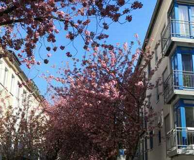 Bonn - Gepflegte 3-Zimmer Wohnung mit Terrasse im Herzen Altstadt Bonn