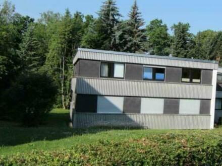 Calw - Großzügige helle Eigentumswohnung in ruhiger unverbauter Lage