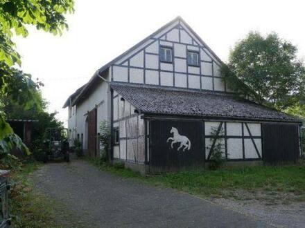 Hecken - Bauerhaus Immobilie mit Scheune und Nebengebäuden in Hecken